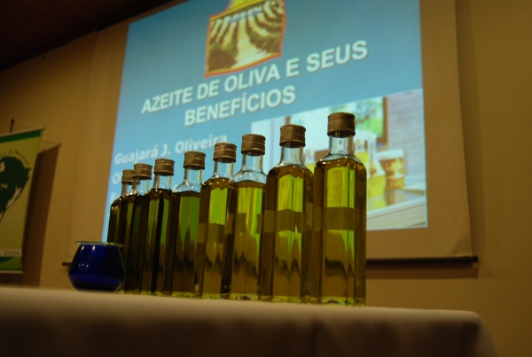 Aumenta na Ordem de 16 e 17% na importação de azeites e azeitonas nos meses de maio e junho/17