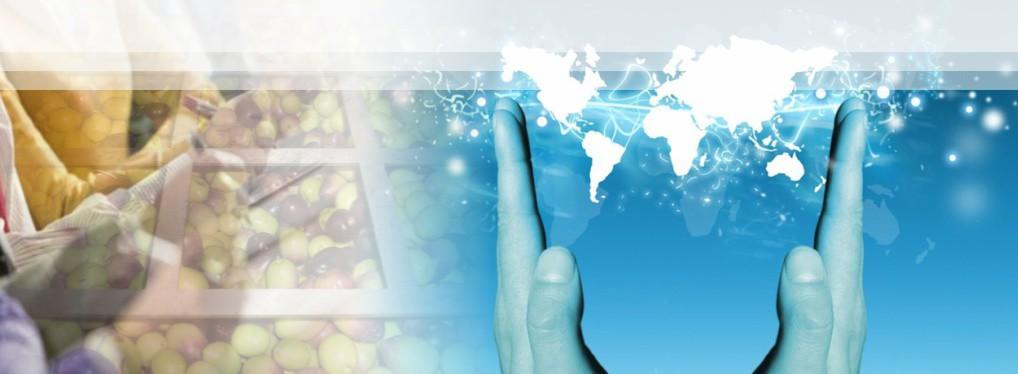 A Entidade promove cursos no exterior