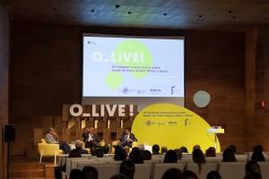 Olive2018 -geral
