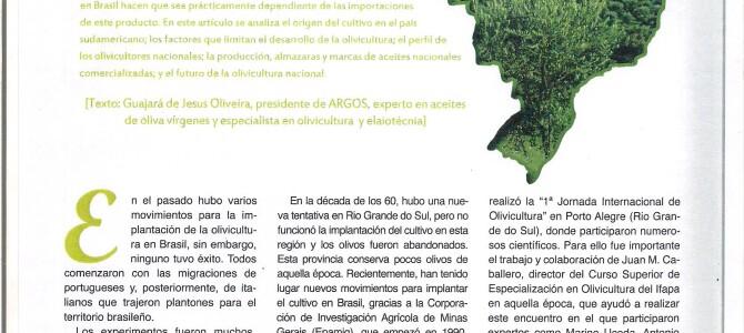 A Olivicultura brasileira e seus movimentos-2021